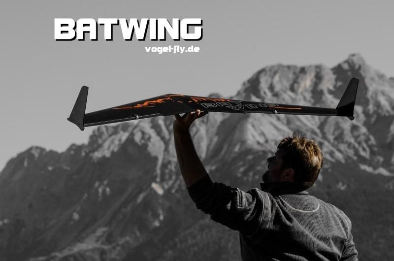 batwingmain.jpg.a20ab17521dd0c5b20193f7eb9d22d0b.jpg